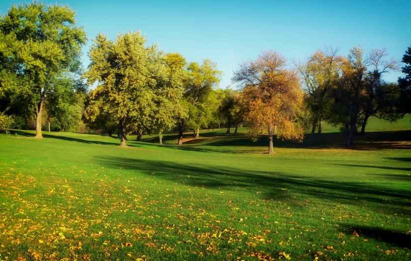 Expect grass fertilizer on Fri, Nov16
