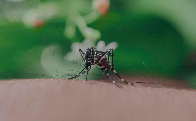 Mosquito spraying tonight in Weybridge (Wed,8/25)